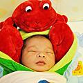 20101014 毛茸茸
