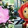 20101225 南投花卉嘉年華