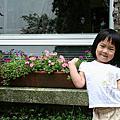 June 20-21, 2008 奮起湖2日遊