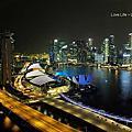 2014 新加坡摩天輪