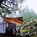 2019 南投鹿谷。溪頭夢中森林_杉林溪[51露]