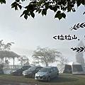 2020 桃園復興。拉拉山雅比斯營地_伊豆大島櫻