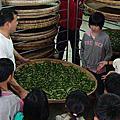 高寮國小戶外教學-製茶體驗營