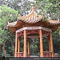 紅楠、山月桃、芒萁~桃園市(虎頭山公園)2018-2-25