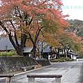 日本東北&風雅之國
