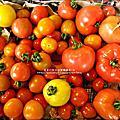 關西-金勇DIY蕃茄農場 2012-0329