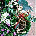 2009-1222-聖誕節盆景