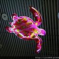 水中世界的公共藝術