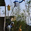 『秘私鷺鷥』-宜蘭縣吳沙國中