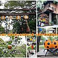 嘉義親子旅行-民雄旺萊山金桔觀光工廠-入園免門票露營區與甲蟲生態