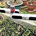 藍牙音響推薦│SANSUI山水 TWS可攜式無線藍芽聲霸 SN-R500,環繞音效雙喇叭10W功率TWS無線串聯大容量鋰電池,持久續航6小時不斷電重低音震膜輕巧好攜帶