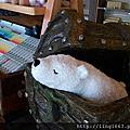 來屏東國立海洋生物博物館-熊大庄白熊文創館看可愛的熊...