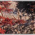 2012京都清水寺