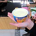 【夏天限定】一吃難忘好滋味,夏日消暑必備–埔心鄉農會金蜜芒果!