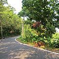 261 龜山島