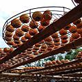 新埔 味衛佳柿餅農場