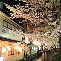 2010-04-04 京都春爛漫day4