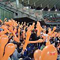 在台北看球