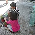 小小孩草莓種植體驗 ~活動情形~