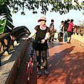 台東單車道之旅