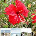 Travel_2014 Ishigaki