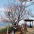 20160306_汐止大尖山
