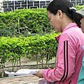 2011.05.26矮仔成蝦仁飯遊台南~