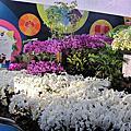 2013 國際蘭花展