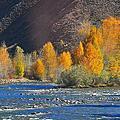 北疆額爾齊斯大峽谷