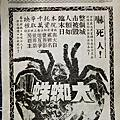 大蜘蛛 The Giant Spider Invasion