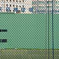 1001120棒棒堂與日橋學校友誼賽-天母棒球場