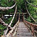 祖谷蔓橋(かずら橋)
