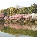 2009/04/08關西蜜月行-第二天