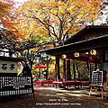 2016秋。京奈楓迷自由行─高雄の茶店。硯石亭
