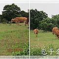 20110421_包子企業員工旅遊_豆腐岬