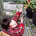 103/01/12採草莓