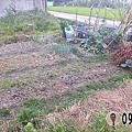 草屯菜園小農地