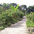 仙峰巷景觀平台