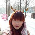 ♥2013韓國聖誕行♥