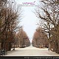 【國外旅遊。趴趴走】20130313 東歐 奧地利 維也納 熊布朗宮