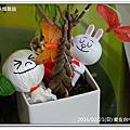 20160221 愛在台中未婚聯誼活動(高個男vs氣質女)