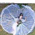 050-光之草原-婚紗景點推薦