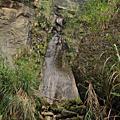南投杉林溪-【水漾森林】-人生艱苦爬山初體驗