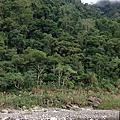 新竹竹東獵人學校