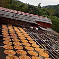 新埔味衛佳柿餅觀光農場