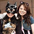 貓節蹓猫活動