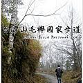宜蘭南澳.台灣山毛櫸國家步道
