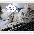 2009.05.11 誰最囂張