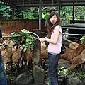 2007 頭城農場