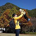 2014.12.06-07奧萬大陽光森林★台中秋紅谷泰迪熊★小毛寶1y4m7d